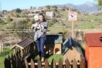 HAYVAN HAKLARı - ALKÜ'den 'Pati Çatısı' Projesi