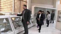 BALIK TÜRÜ - Diyarbakır'da 'Zooloji Müzesi' Açıldı