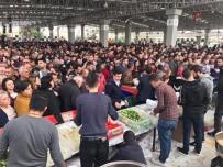 MEHMET ALİ TALAT - Kıbrıs'ta Hamsi Festivali Düzenlendi