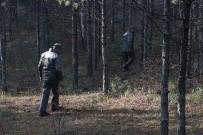 ÇAM AĞACI - Orman Memurları Çam Nöbetinde