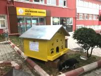 Öğrencilerden Sokak Kedilerine Sıcak Yuva