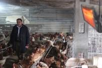 ÜÇTEPE - Soğuktan Verimi Düşen Tavukları Elektrikli Isıtıcıyla Isıtıyor