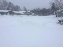 SOĞUK HAVA DALGASI - ABD'de Kar Hayatı Olumsuz Etkiliyor