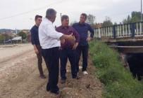 FATİH ÇALIŞKAN - Hisarcık Belediyesi'nin Taşkın Koruma Projesi