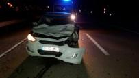 Otomobil İneğe Çarptı Açıklaması 1 Yaralı