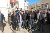 ÇINAR AĞACI - Yahyalı'da Bin Adet Çınar Fidanı Dağıtıldı