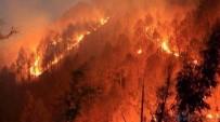 ORMAN YANGINI - Kasım Ayında 52 Orman Yangını Çıktı