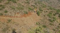 Yukarı Afrin Baraj Havzasına 200 Bin Fidan Dikilecek