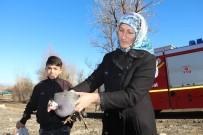 KAZIM KARABEKİR - Oltu Çayına Düşen Tavuğu İtfaiye Yardımıyla Kurtardılar