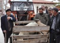 Açık Arttırma İle Satılan Küçükbaş Hayvanın Geliri Camiye Bağışlandı