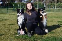 CADDEBOSTAN - Bir Köpek Aldı Hayatı Değişti