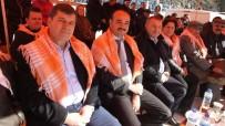 ÖNDER COŞĞUN - Gömeç'de Yılın Son Günü Deve Güreşi Heyecanı Yaşandı