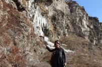 ŞELALE - Ardahan'da Soğuk Hava Nedeniyle Şelale Dondu