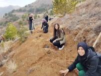 KYK Ormanı İçin Bin Adet Fidan Diktiler