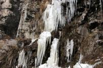 ŞELALE - Soğuk Şelale Dondurdu