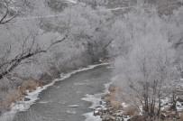 UÇAK SEFERLERİ - Kars'ta Kırağı, Sis Etkili Oluyor