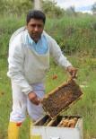 Arı Yetiştiricileri Birliği Başkanı Özdemir'den Arıcılara Uyarı