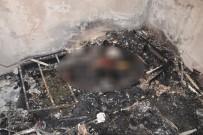 CİNAYET ZANLISI - Bıçaklandıktan Sonra Yakılmıştı, Sanık Tahliye Edildi
