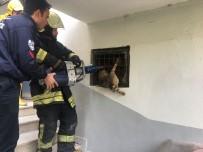 SOKAK KEDİSİ - Bodrum Katta Parmaklıklara Sıkışan Kediyi İtfaiye Kurtardı