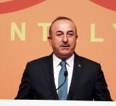 MEVLÜT ÇAVUŞOĞLU - Dışişleri Bakanı Çavuşoğlu Sırbistan'da