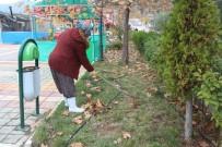 ÇALıŞMA VE SOSYAL GÜVENLIK BAKANLıĞı - Sokak Temizliğine Kadın Eli Değdi
