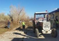 Seydişehir Belediyesi Ağaçları Buduyor