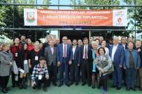 HAYVAN HAKLARı FEDERASYONU - Hayvan Hakları Savunucuları Şanlıurfa'da Buluştu