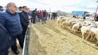 MEHMET ALI ÖZTÜRK - İzmir'de Tarım Böyle Gelişiyor