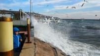 HOŞKÖY - Marmara'da Denizi'nde Lodos