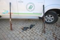 BEYŞEHIR GÖLÜ - Milli Parkta Su Kuşu Ve Ördek Avına 7 Bin 288 Lira Ceza