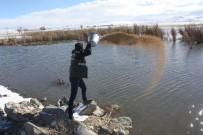 ORMAN VE SU İŞLERİ BAKANLIĞI - Van'da Yaban Hayvanları İçin Sulak Alanlara Yem Bırakıldı