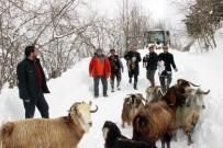 İBRAHIM SAĞıROĞLU - 2 Çoban Ve 250 Küçükbaş Hayvan 4 Saatlik Operasyonla Kurtarıldı