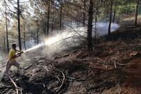 DEMİRYOLLARI - Adana'da Geçen Yıl Çıkan Yangınlarda 146 Hektar Orman Zarar Gördü