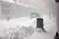 Bingöl'de Kar Ve Tipi Hayatı Felç Etti