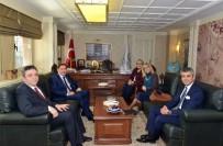 IRKÇILIK - Kamu Başdenetçisi Malkoç Açıklaması 'İnsanlığın Huzura, Demokrasiye, İnsan Haklarına Ve Barışa İhtiyacı Var'