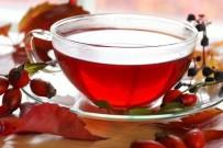 KUŞBURNU - Kuşburnu Çayı İçmek İçin 9 Neden