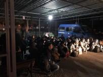 KAÇAK GÖÇMEN - Aydın'da 61 Kaçak Göçmen Yakalandı