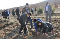 ASKERLİK ŞUBESİ - Gölbaşı Metem Hatıra Ormanına 2 Bin Fidan Dikildi