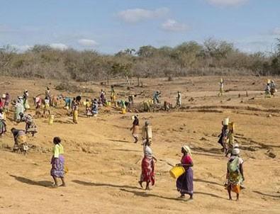 Kenya'da 3 yıldır süren kuraklık ulusal afet ilan edildi