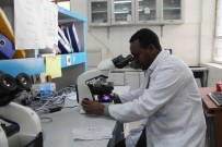 ETIYOPYA - TİKA, Etiyopya'da Mekele Devlet Hastanesine Tıbbi Ekipman Desteğinde Bulundu
