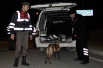 EĞLENCE MEKANI - Jandarma Ve Emniyet'ten Eş Zamanlı Huzur Operasyonu