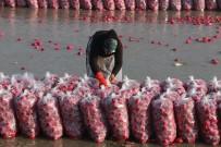 AHŞAP EV - Mevsimlik İşçilerin Zorlu Mücadelesi
