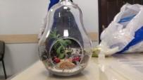 HEDİYELİK EŞYA - Zeytinburnu Tıbbi Bitkiler Bahçesi'nde Teraryum Eğitimi
