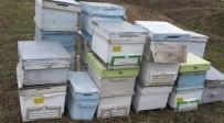 BAL ARISI - Bal Arısı Kovanı Çalan Şüpheli Yakalandı