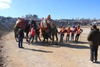 EDREMIT BELEDIYESI - Deve Güreşlerinin Kırkpınar'ı Edremit'te Yapıldı