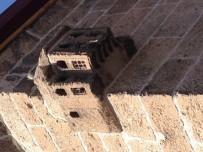 Cami Duvarında Bulunan Kuş Evi Büyük İlgi Görüyor