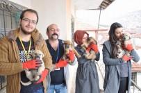 KORUMA EKİBİ - Yozgat'ta Hayvan Koruma Ekibinden Örnek Yardım