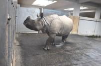 HAYVANAT BAHÇESİ - 14 Şubat'ta Hayvanlar Unutulmadı