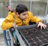 OMURİLİK FELÇLİLERİ - 'Engelimiz Üretime Katılmaya Engel Değil' Projesi İle Tüm Engelleri Aştılar
