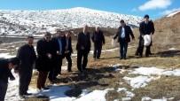 YABANİ HAYVANLAR - Sivas'ta Doğaya Yaban Hayvanları İçin Yem Bırakıldı
